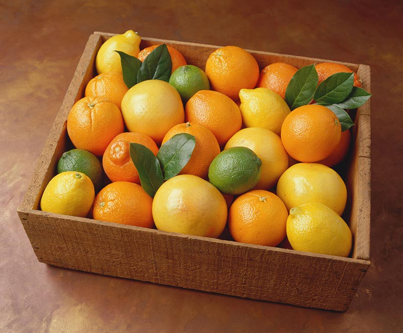 Orange-Lemon